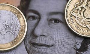 What caused the pound to plunge?