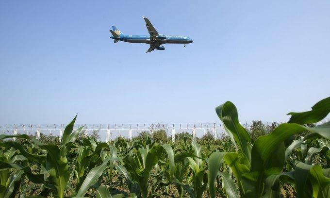 Vietnam Airlines earns $78 mln gross profit, beats full-year target