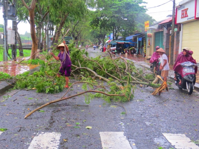 tropical-storm-wreaks-havoc-on-hues-street-trees-3