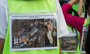 Vietnamese youth rally against dog slaughter and animal cruelty