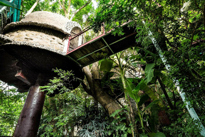 tree-house-hidden-in-hanoi-jungle-enraptures-travelers-8