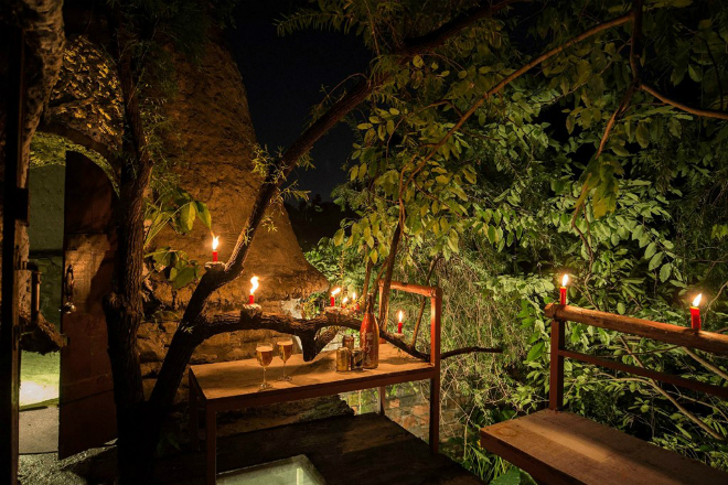 tree-house-hidden-in-hanoi-jungle-enraptures-travelers-11