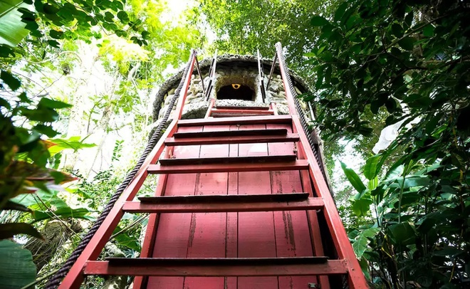 tree-house-hidden-in-hanoi-jungle-enraptures-travelers-6