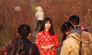 Vietnam weighs record-long Lunar New Year break