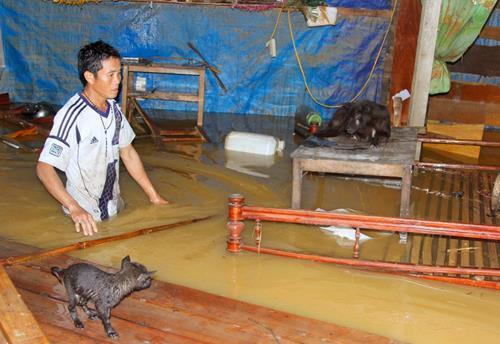 Floods claim 35 souls in central Vietnam