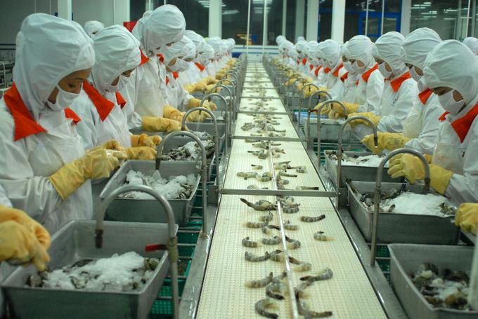Vietnamese shrimp exports under more toxic scrutiny