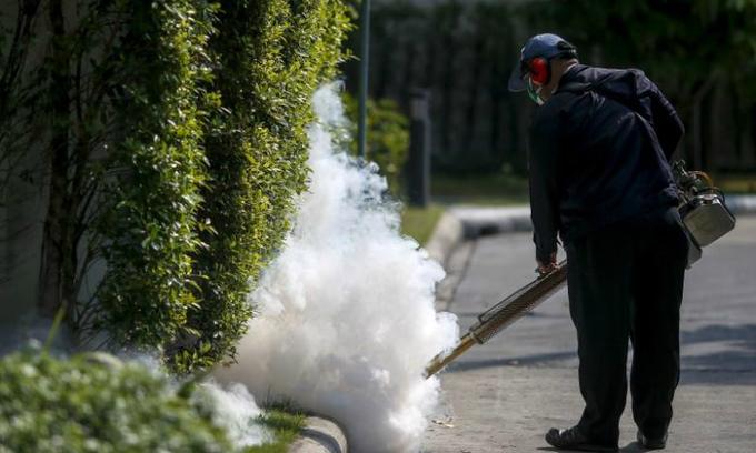 Zika virus strikes again in Ho Chi Minh City