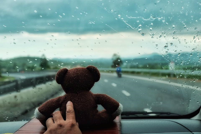 teddy-bear-takes-the-trip-of-a-lifetime-8