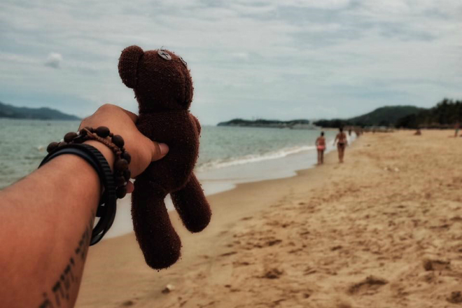 teddy-bear-takes-the-trip-of-a-lifetime-9