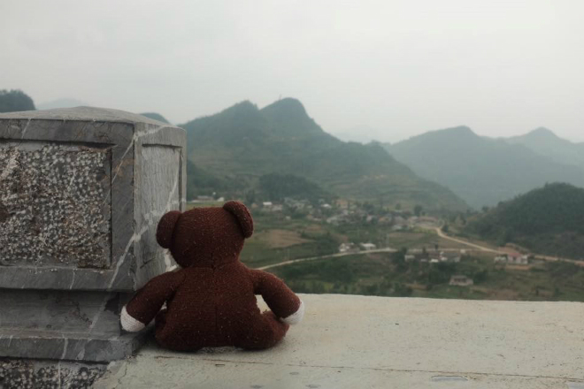 teddy-bear-takes-the-trip-of-a-lifetime