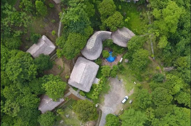 vietnamese-bamboo-house-wins-american-architecture-award