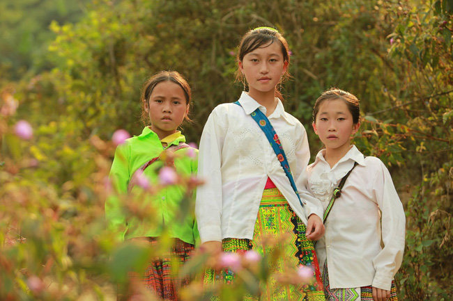 vietnamese-series-claims-prize-at-asia-pacific-broadcasting-awards