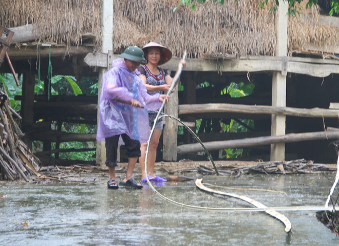 vietnamese-race-against-the-clock-to-save-what-they-can-from-flood-7