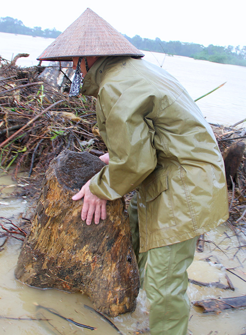people-risk-life-to-pick-up-logs-among-floods-5