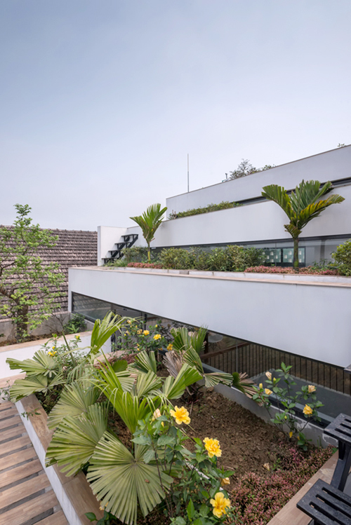 ha-tinh-provinces-terrace-house-gets-international-attention-7