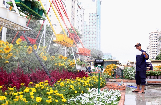 ho-chi-minh-citys-flower-street-welcomes-ads-in-year-of-the-rooster
