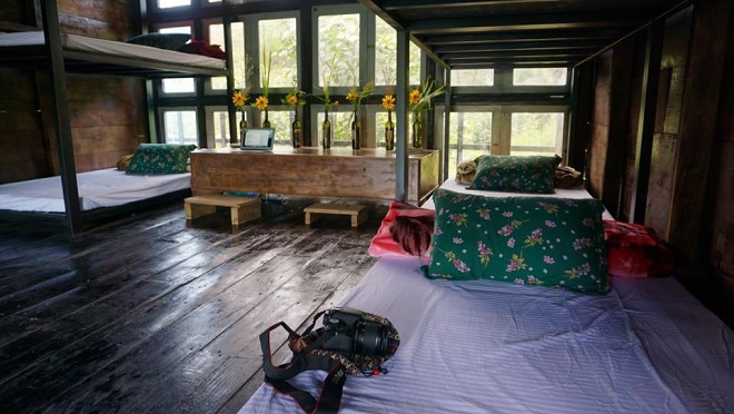 plant-a-tree-to-stay-for-free-at-da-lat-wood-cabin-1