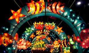 Vietnam – Korea Giant Lantern Festival