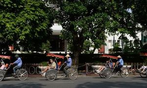 Vietnam anticipates record tourist arrivals this year
