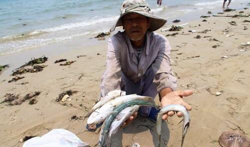 Vietnam suffers 50 major toxic waste scandals in 2016