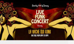 Indika Live Funk Concert