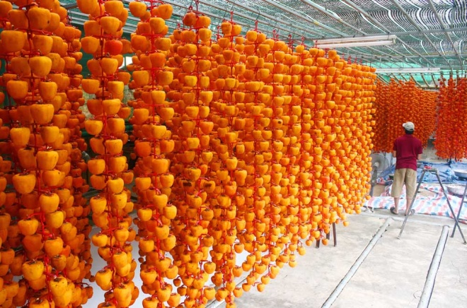 who-says-money-doesnt-grow-on-trees-vietnamese-farmers-cash-in-on-dried-persimmons-2