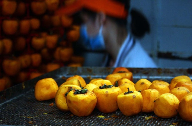 who-says-money-doesnt-grow-on-trees-vietnamese-farmers-cash-in-on-dried-persimmons-6