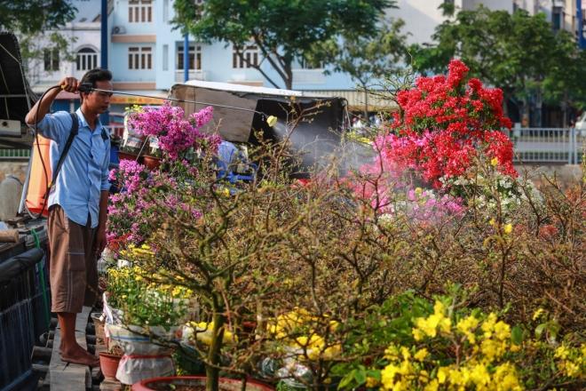 harsh-weather-casts-gloomy-cloud-over-on-saigon-flower-market-4