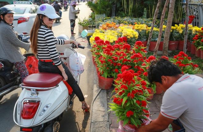 harsh-weather-casts-gloomy-cloud-over-on-saigon-flower-market-5