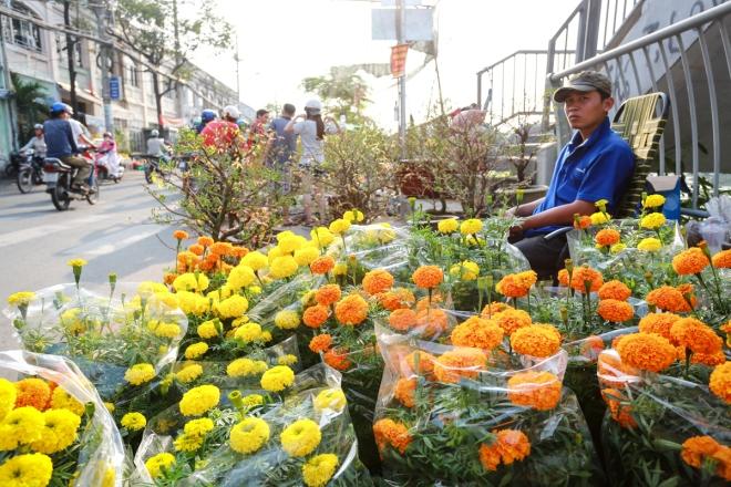 harsh-weather-casts-gloomy-cloud-over-on-saigon-flower-market-7