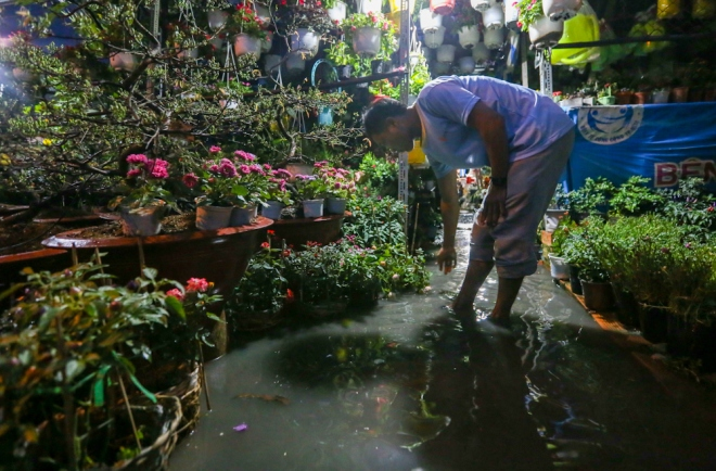 flower-traders-find-themselves-in-a-blooming-mess-after-sudden-saigon-downpour-3