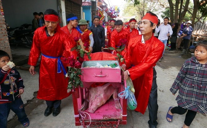 Vietnam praised for less gory version of centuries-old pig slaughter fest