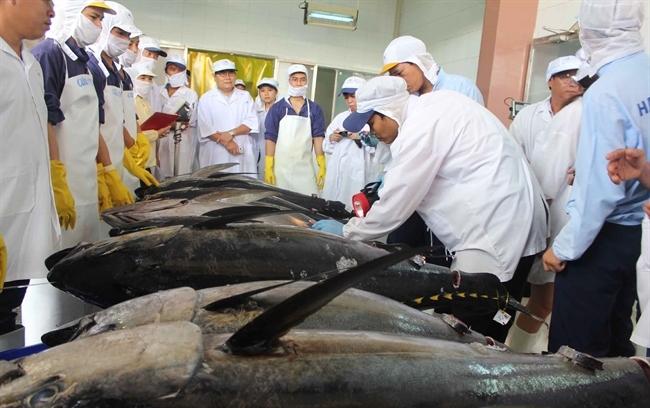 Japanese tariffs hobble Vietnamese tuna exports