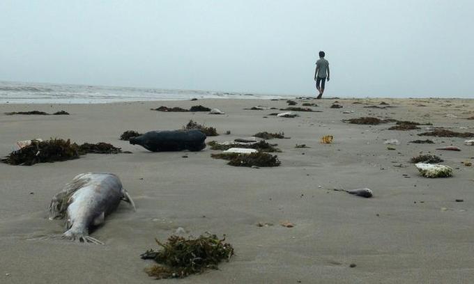 Vietnam names and shames 11 officials over Formosa environmental disaster