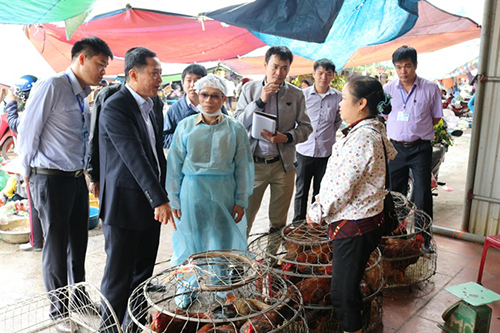 Vietnam forms emergency response teams as bird flu ravages China