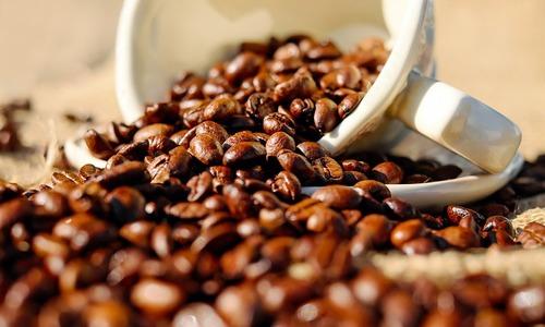 Vietnam's caffeine thirst puts it in world's top growing coffee markets