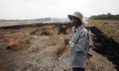 Vietnam tries to keep its head above water as scientists warn of sinking Mekong Delta