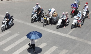 Some like it hot, but don't take heat stress in Vietnam lightly