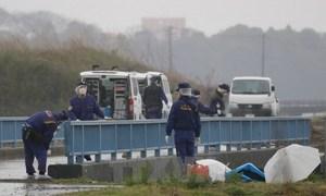 Police arrest male suspect in Vietnamese schoolgirl's death in Japan