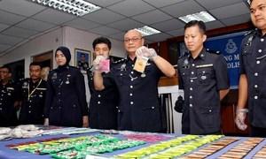 Malaysia police arrest Vietnamese woman in drug raid