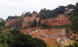 Endangered langurs safe for now after resort project put on hold in central Vietnam