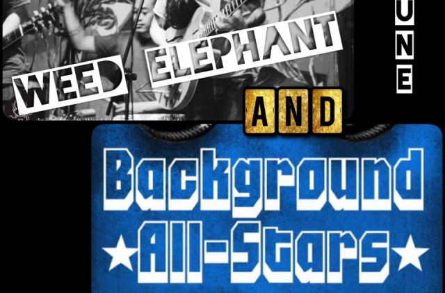 reggae-rock-funk-the-background-all-stars-weed-elephant