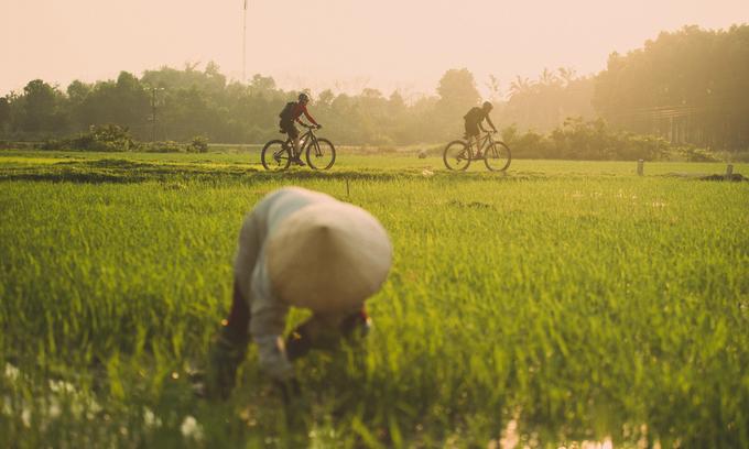 Vietnam, Asian peers can unlock $5 trillion, 230 million jobs via development goals