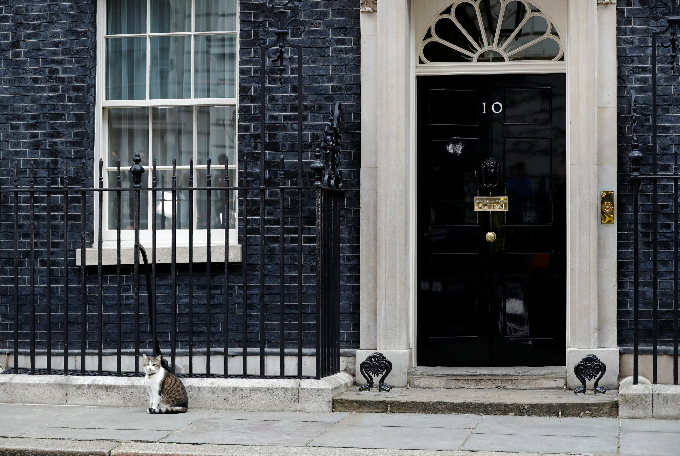 Larry the Downing Street cat sits outside Number 10, in London, Britain, June 9, 2017. Photo by Reuters/Stefan Wermuth