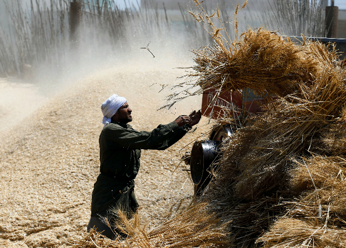 the-hands-that-feed-portraits-of-global-farmers-3