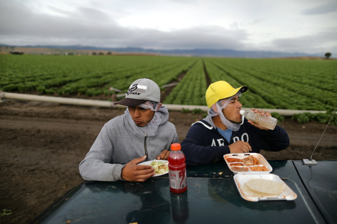the-hands-that-feed-portraits-of-global-farmers-4