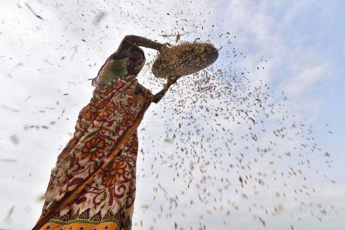 the-hands-that-feed-portraits-of-global-farmers-9