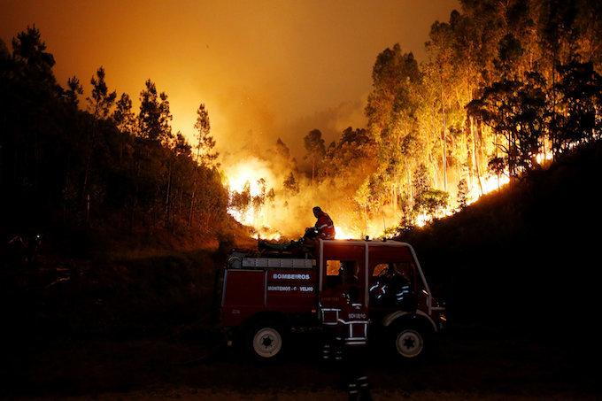 Huge Portugal forest fire kills 25, injures 16
