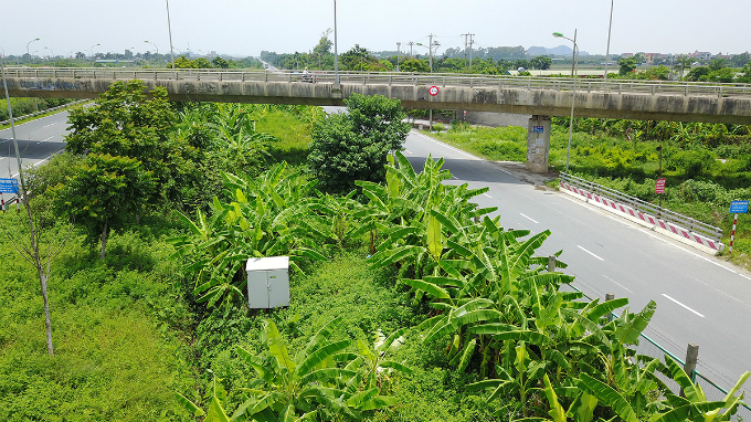 how-the-green-grassy-median-strips-in-hanoi-become-a-divisive-political-saga-8