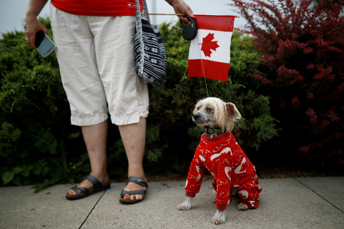 A woman holds her dog dressed up in Canada clothing during the East York Toronto Canada Day parade, as the country marks its 150th anniversary with Canada 150 celebrations, in Toronto, Ontario, Canada July 1, 2017. Photo by Reuters/Mark Blinch